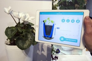 Smart  Flower  Pot  from  'Parrot'  at  CES  2015.